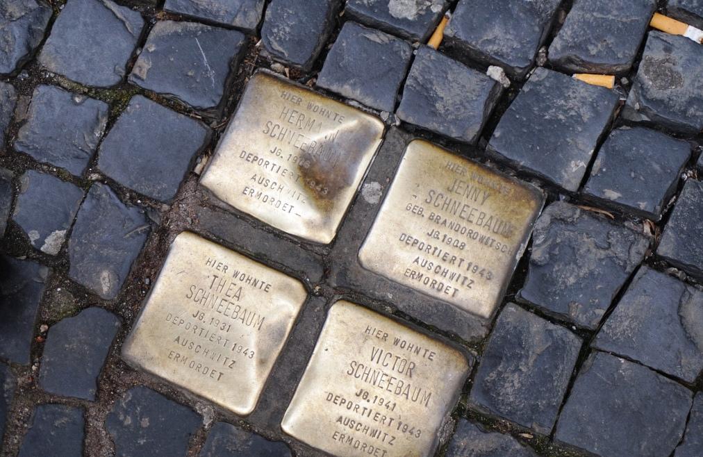 Les llambordes daurades són això. M.D. Berlin2018